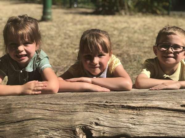 Children on logs